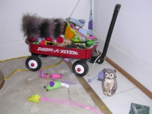 My toy box is actually a toy WAGON!