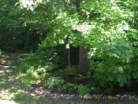 My nice shady back yard hideaway (one of them!)