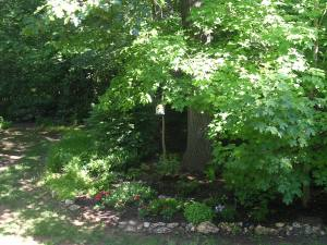 My nice shady back yard hideaway (one of them!)