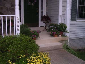 Potted plants on Sam's front porch.