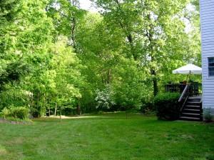 Sam's backyard