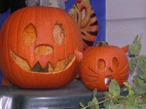 "Halloween pumpkins - including a ""cat"" pumpkin!"