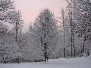 Snow and Pink Sky - Pretty Combination