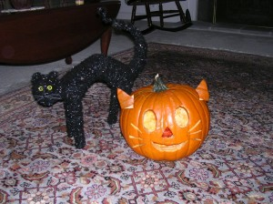My Cat-O-Lantern for Halloween 2011