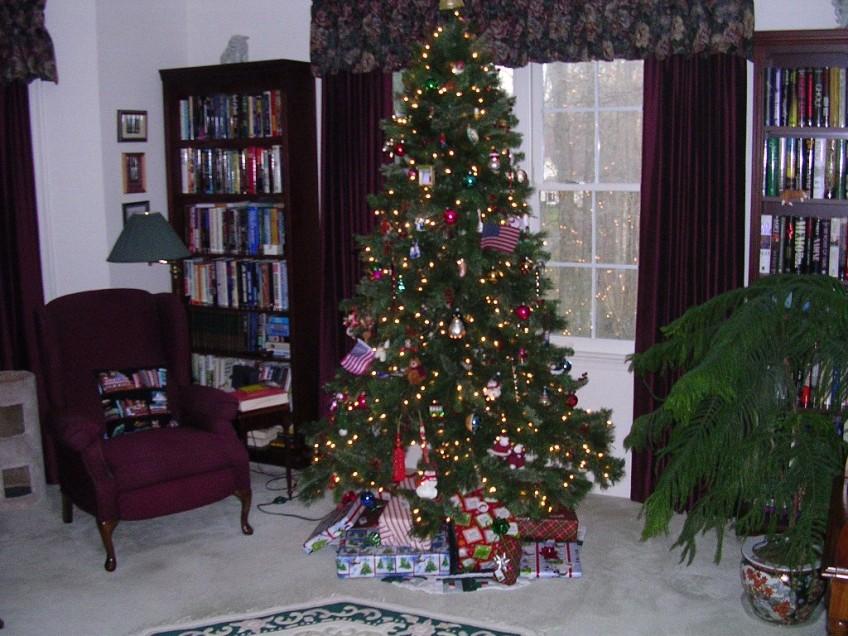 Sam's Christmas Tree 2011