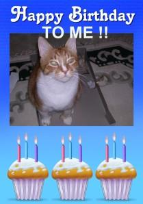 Sam's Birthday 2012