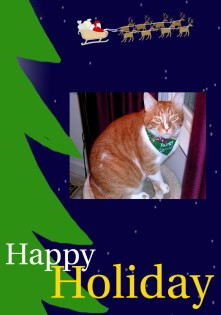 Sam's Holiday Card