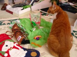 Sam With His Christmas Presents!