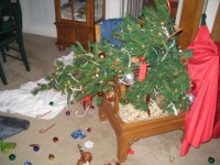 Sam's Cousin Toby's Christmas Tree Disaster