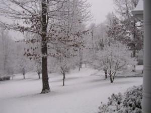 January 2012 Snow