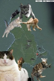 Japanese Cat Island Map