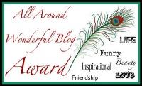The Wonderful Award for blogging