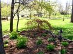 Front Garden 2012