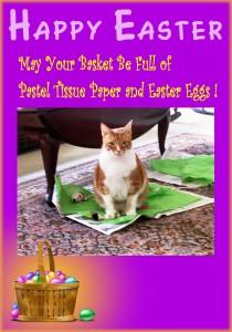 Sam's Easter Card