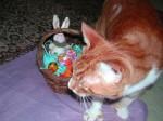 Sam Easter 2012