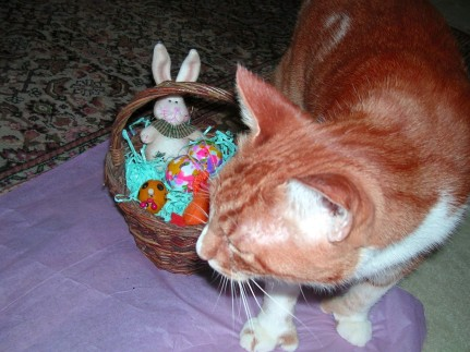 Sam's Easter Basket 2012