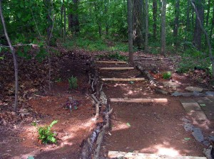 """Down the trail to the woods is another great """"outdoor toilet"""" !"""