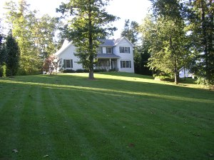 No our lawn does NOT look like this now - this is from several years ago BUT we are happy to be on THE HILL!