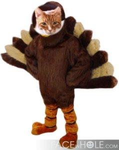 Meowwww.....OOPS.....I mean GOBBLE GOBBLE!