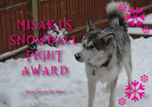 snowball-fight-award