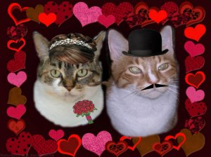 Sundae and me in our Valentine's Ball finery last year!
