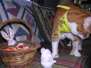 OK....enough photos Mom, let's have Easter breakfast (with bacon of course)!