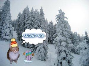 snownoSam