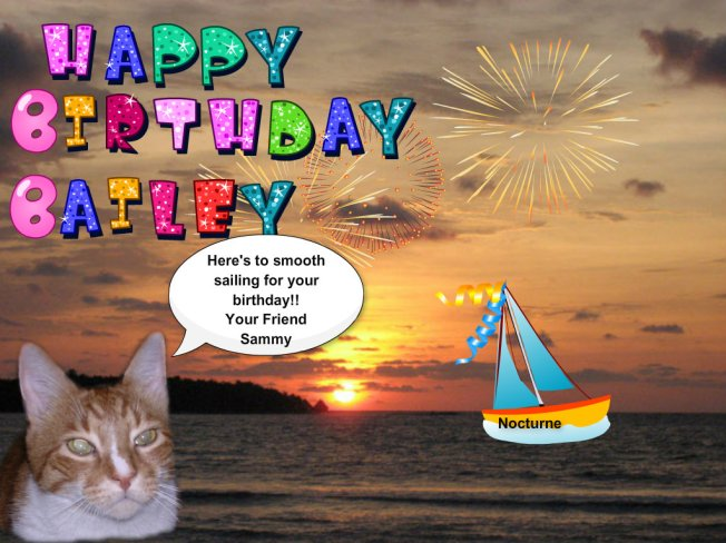 Enjoy your day Bailey!
