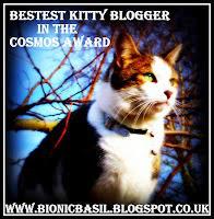 bestest-kitty-blogger-award