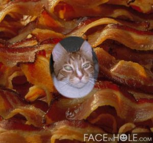Oh boy!  Me swimming in a pool of bacon!