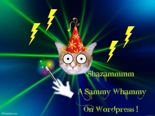 Sammywhammy