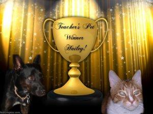TeachersPetWinner