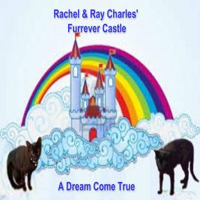 RachelandRayCastle