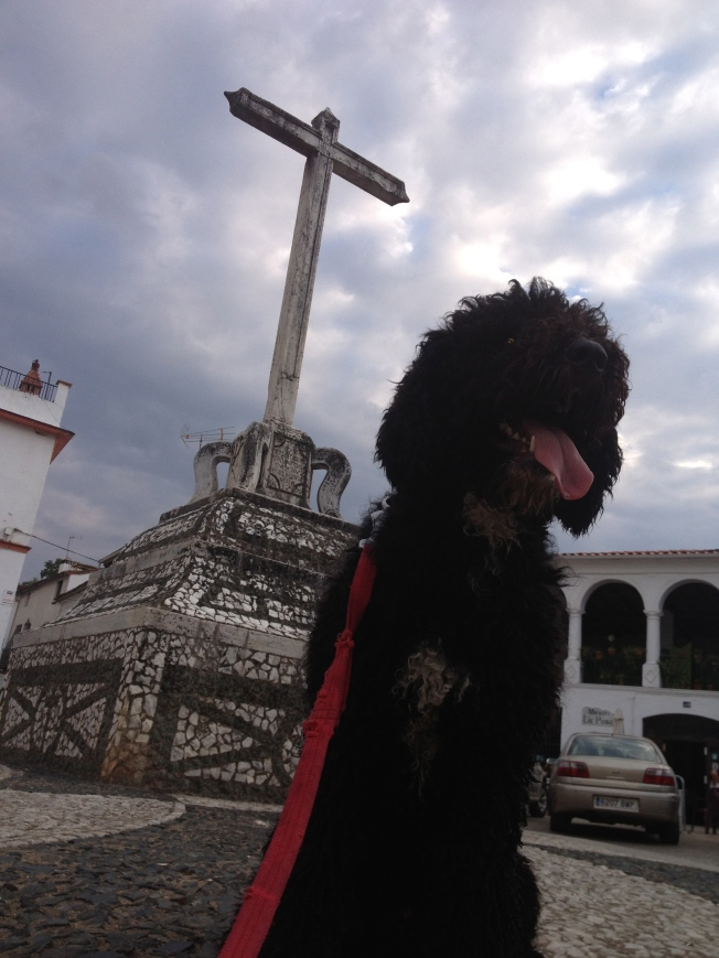 Hi!  I'm Doggy and I'm with my human in beautiful Fuenteheridos, Huelva, Spain!
