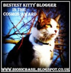 bestest-kitty-blogger-award