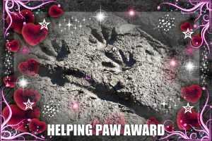 helpingpawaward