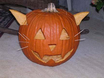 Looks more like YODA than a cat !!!!!
