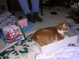 Crammed in a Christmas box!