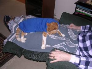 SammySweater2