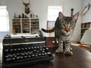 I think this guy wants to use Hemingway's old typewriter!
