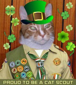 """I even got all """"greened"""" up at Scouts for St. Pat's Day!"""