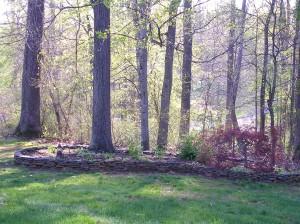 Sort of Spring....pre-mulching