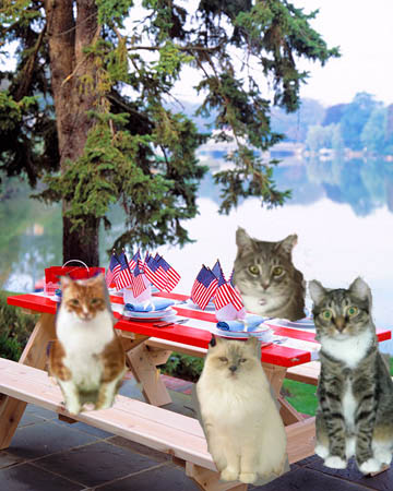 Me, Allie, Gracie and Raz welcome you to our Memorial Day Cookout!