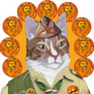 I'm a Lion Scout now AND Troop Leader of Wildcats Troop too!