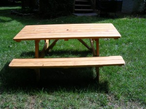 We've gotta try this new picnic table out......!