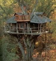 This is the treehouse photo I showed Easy.....