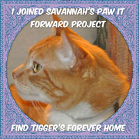 paw it forward badge side bar