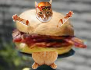 I look so hilarious in this bacon cheeseburger costume I just HAD to post it again...HAHA