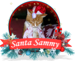 SANTASAMMY