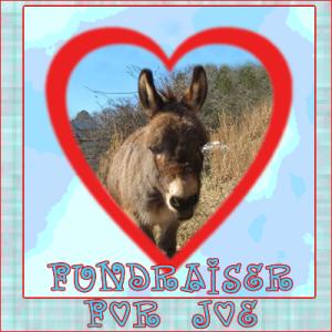 Thanks for helping me raise money for Joe!!